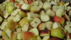 Cut Apples for Josephine's Feast Apple Butter