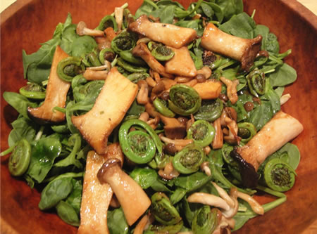 Fiddlehead and Trumpet mushroom on Spinach