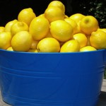 Lemons on Table