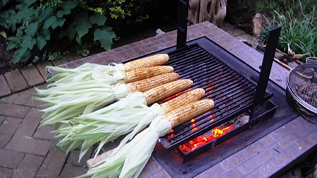 Corn with Curry Rub